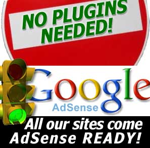 adsense ready websites