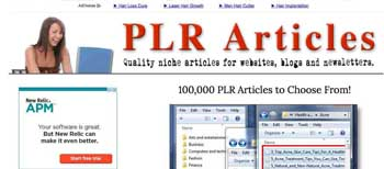 PLR_articles_store_-_Niche_PLR_Articles_You_ll_Love!