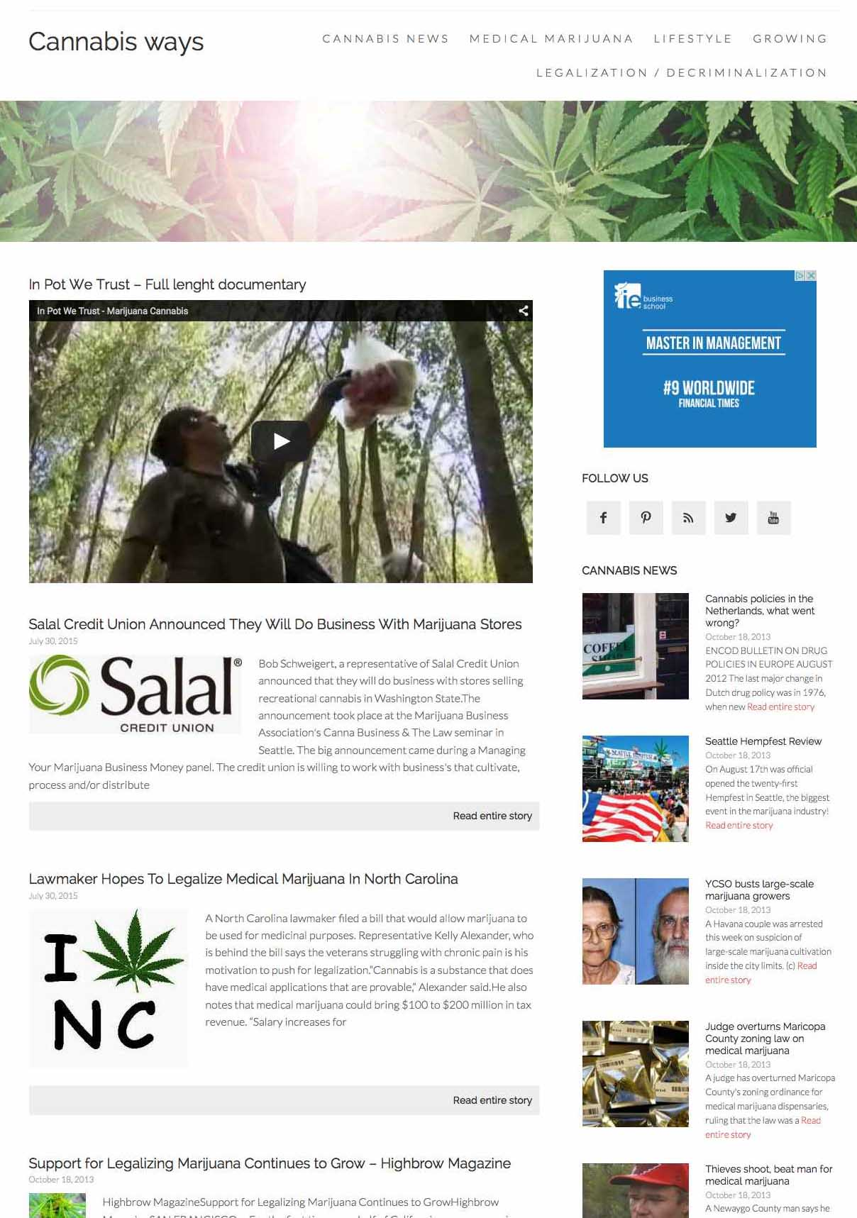 Cannabis and medical marijuana news and insights